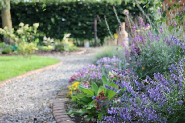 John Jones Master My Garden