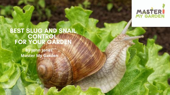 Slug and snail control methods